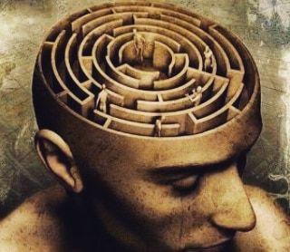 dolor y cerebro